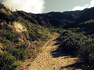 A sandy hiking trail cutting through brush up leading toward the foothill ridge on a sunny day with cloudy blue skies.