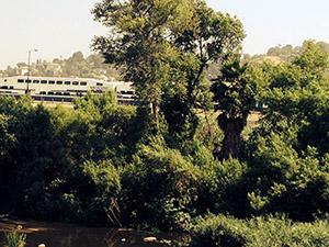 Train across the river