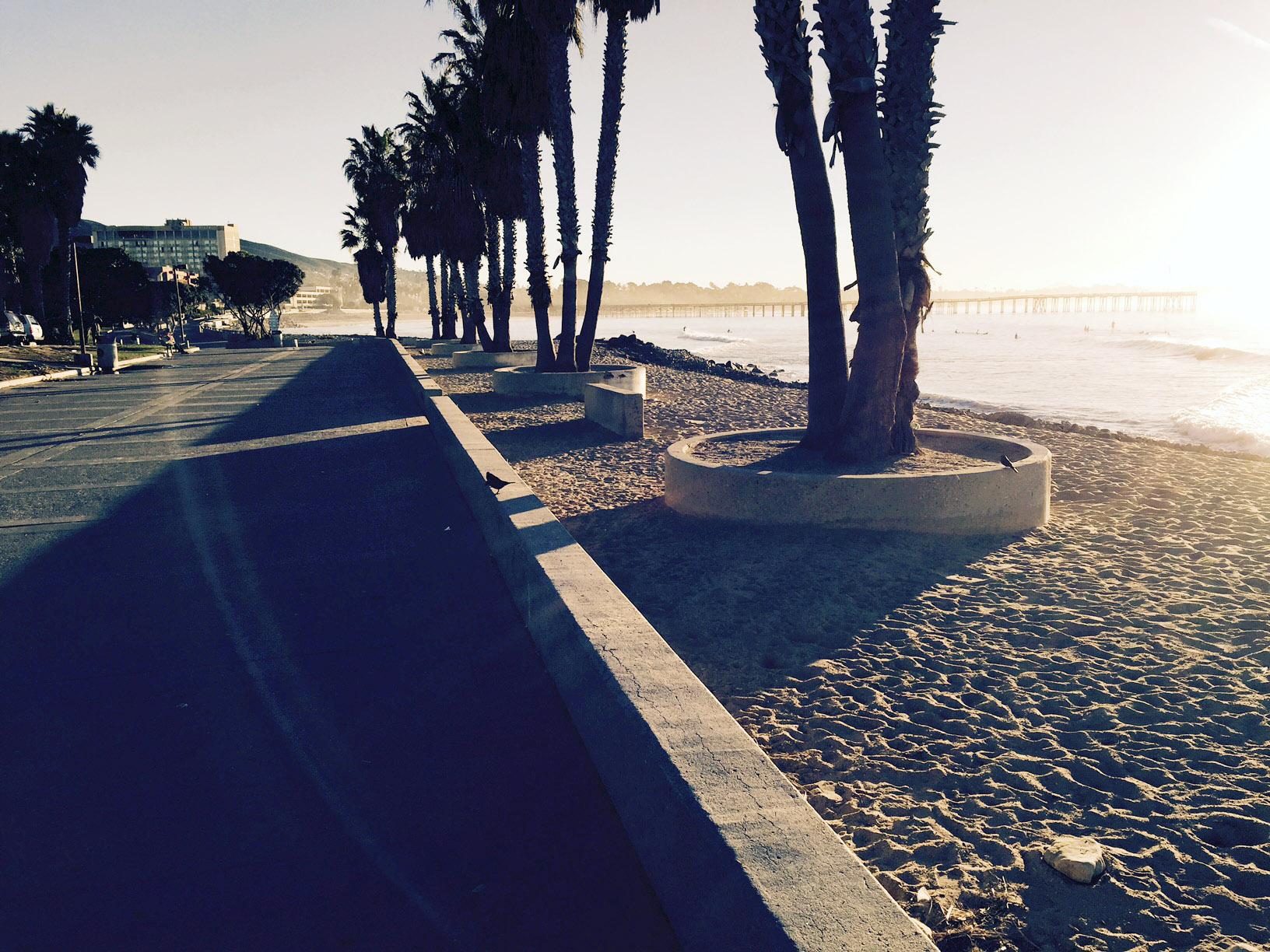 Waves, sand, palm trees, path.