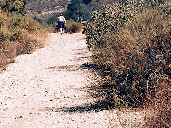 Man hiking ahead on the trail