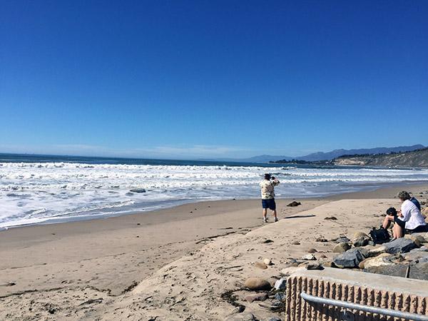 Mark takes photos on the sandy beach near the waves
