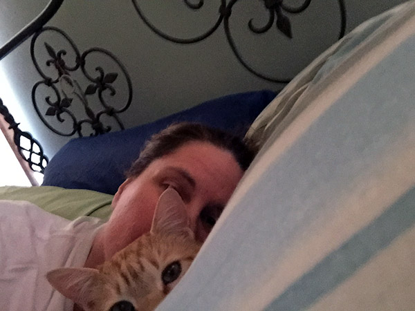 Laurie and Tiger hidden by pillows in the bed.