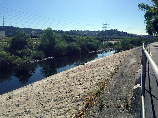 LA River seen from the bike path