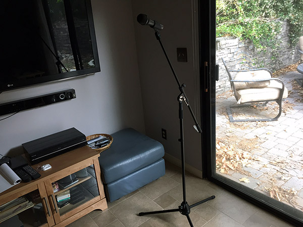 Microphone stand in the family room