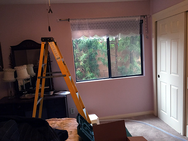 Ladder in cleared space in the guest room