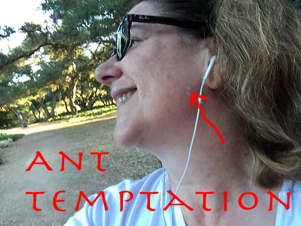 Laurie in profile with a red arrow drawn pointing to a drop of sweat on her cheek while in the park
