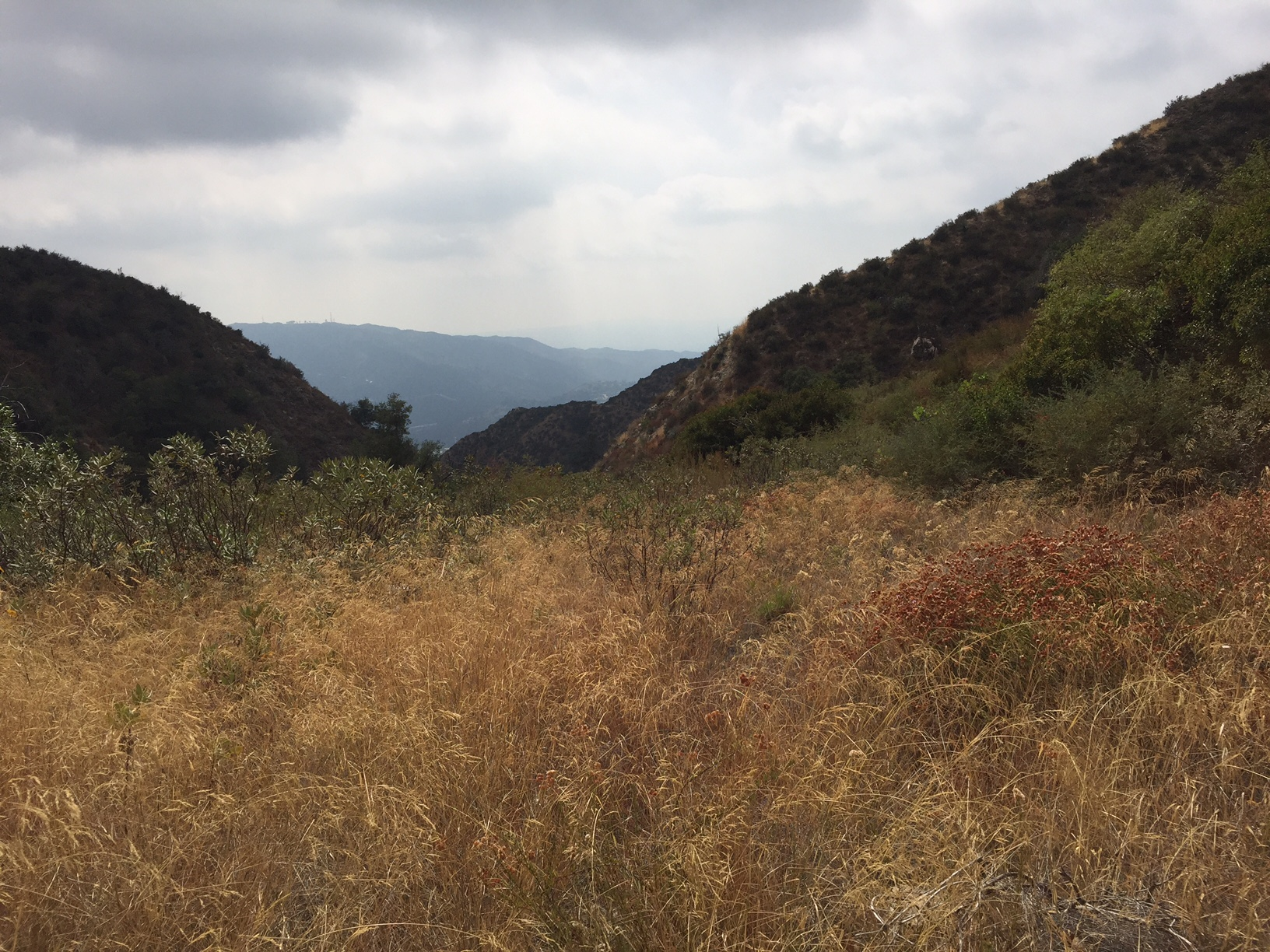 View from the mountain - overcast clouds, dried grass, down the valley
