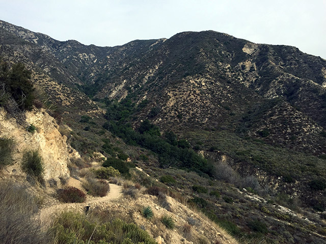 Path winding down the high chaparral mountainside