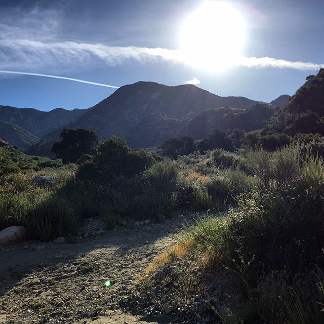 Sun shines brightly on the hiking path with foothills in the background. Bright blue skies and wispy clouds.