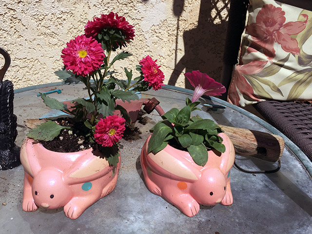 A pair of pink bunny planters filled with pink flowers