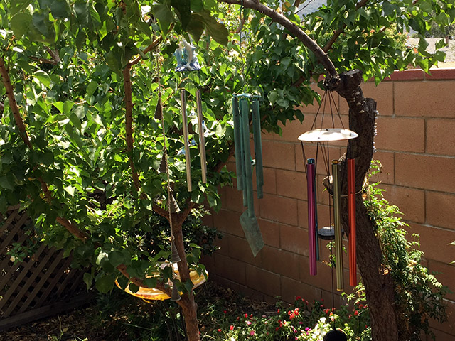 Different wind chimes hang from a curved branch from an old tree in the garden in front of a brick wall.
